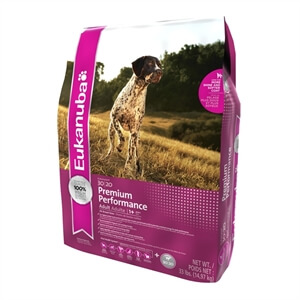 Premium Dry Dog Food