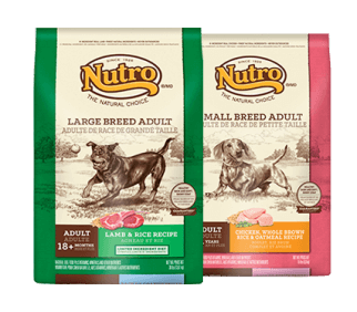 nutro natural choice assorted