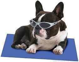Pet Cool Matz